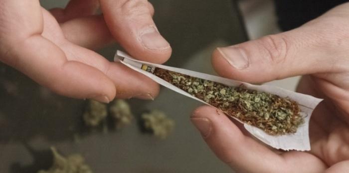 6498281-le-cannabis-nouvelle-generation-inquiete