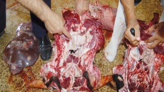 saisie-viande-oujda